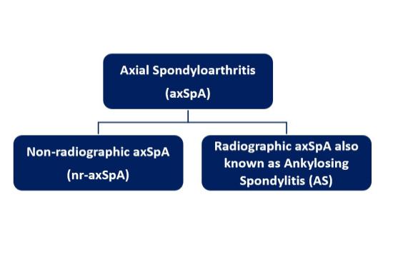 Axial spondyloarthritis (axSpA)